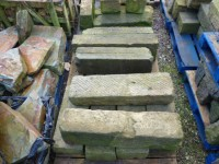 Reclaimed Yorkstone Steps
